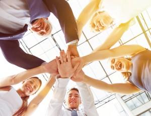 Unsere Unternehmensbereiche